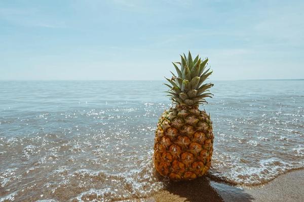 vertus de 3 aliments : ananas, pamplemousse et chicorée